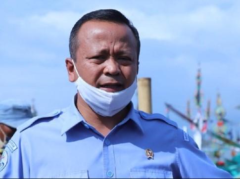 BREAKING NEWS: KPK Disebut Tangkap Menteri Edhy Prabowo terkait Ekspor Benih Lobster