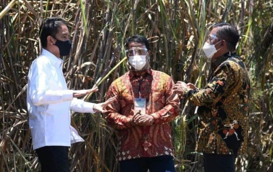 Berkunjung ke Sultra, Jokowi Resmikan Pabrik Gula di Bombana