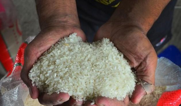 Indef: PPN Sembako Premium Berpotensi Mendorong Lonjakan Impor Pangan