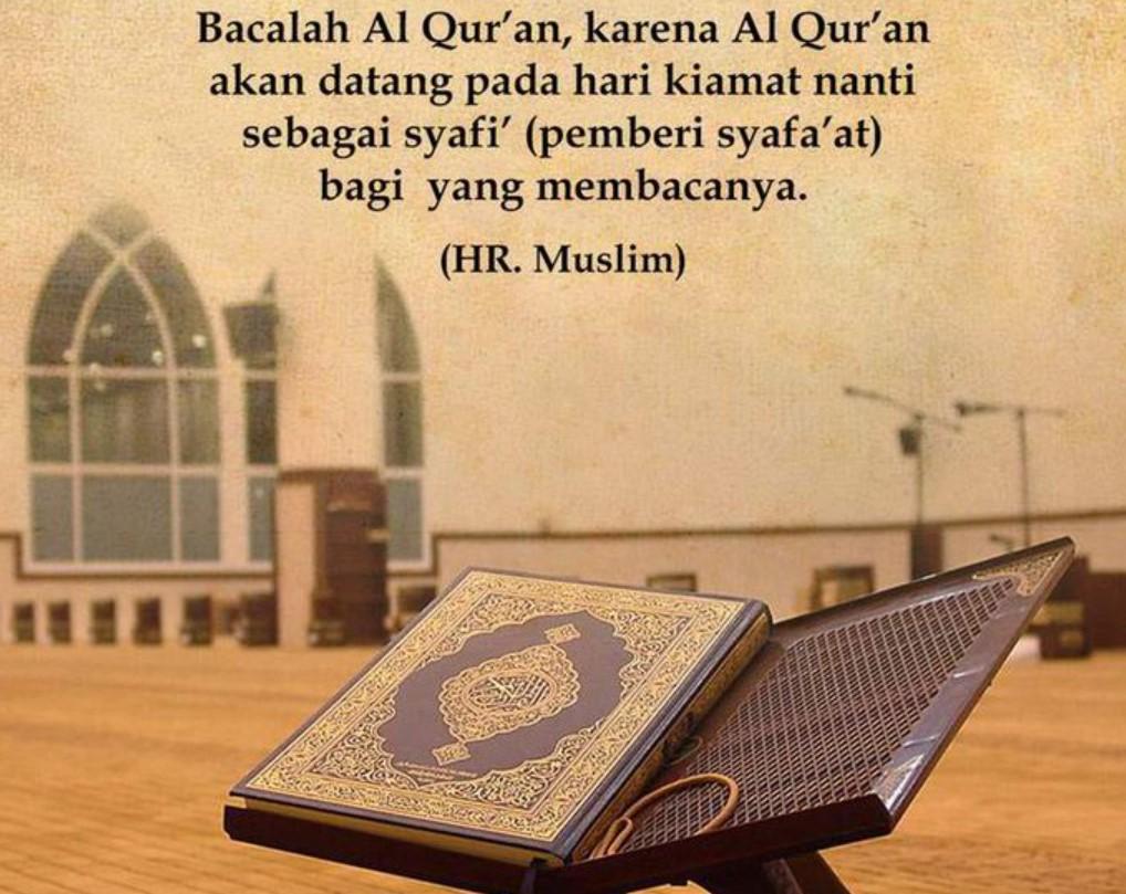 Ini Keutamaan Membaca Surah Yasin, Al Mulk, Al Waqiah dan Al Kahfi