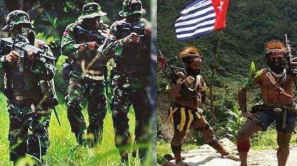 Kontak Senjata dengan TNI-Polri, 2 Anggota KKB Tewas