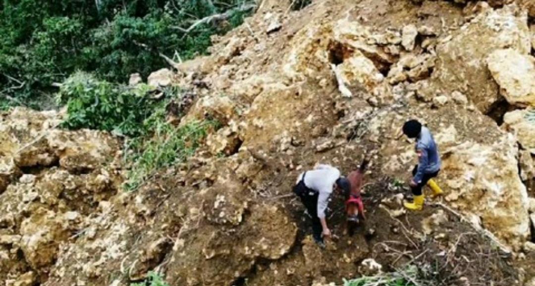 Meski Minim Alat Berat, Brimob Polda Sulsel Terus Mencari Korban Tertimbun akibat Gempa Sulbar