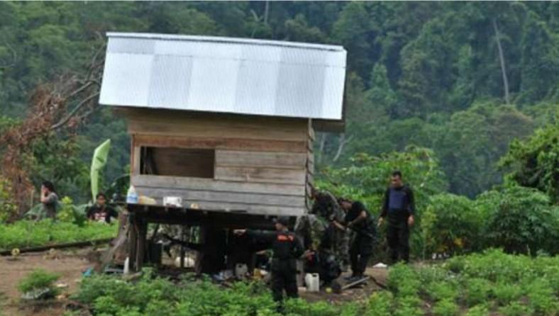 Operasi Satgas Tinombala, Istri Ali Kalora Ditangkap Densus 88