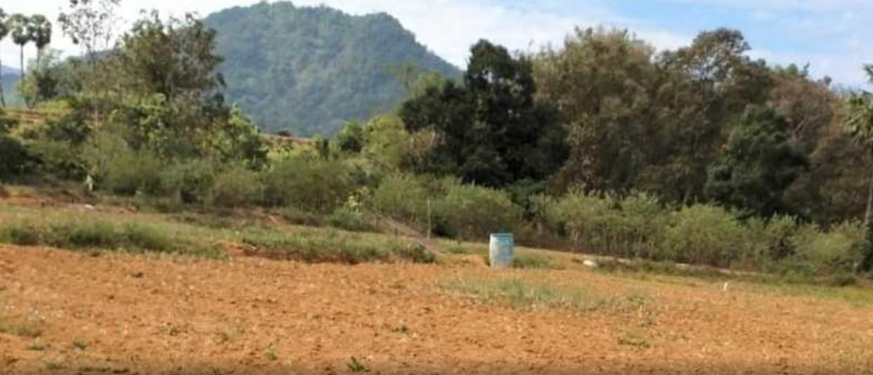 Petani Bawang Merah Gigit Jari di Barru, Ini Masalahnya