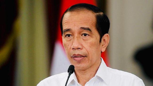 Pidato Jokowi Soal Bipang Ambawang Berbuntut Panjang