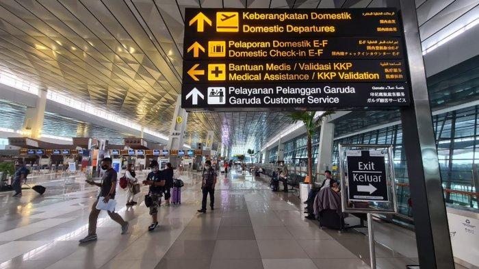 Politisi Gerindra Minta Luhut Tutup Penerbangan Internasional di Masa PPKM Darurat