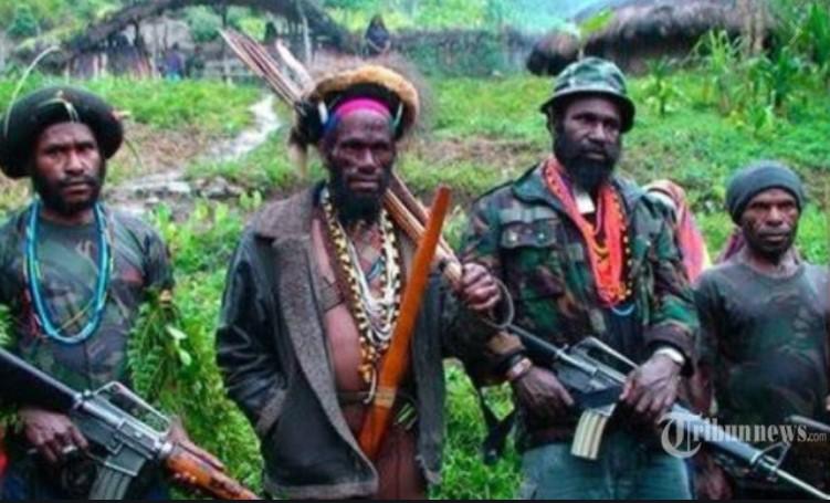 Satu Keluarga Kepala Desa di Ilaga Papua Ditembak Mati KKB