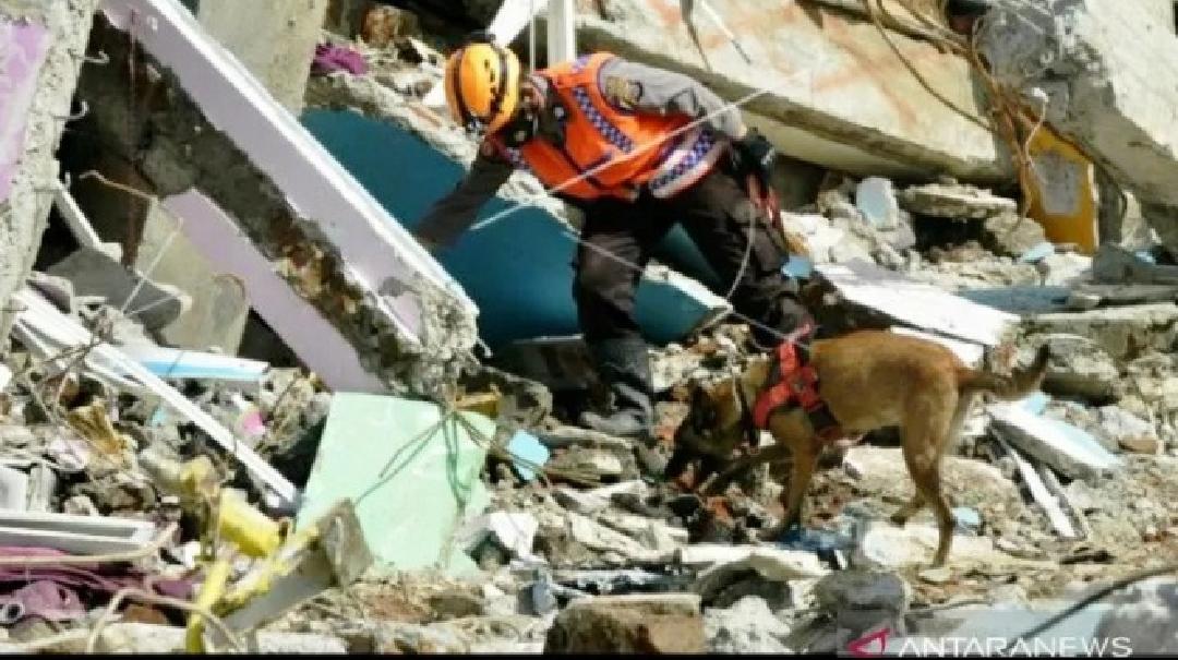 Update Gempa Mamuju, Sudah 84 Korban Tewas