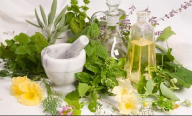 WHO Setujui Uji Klinis Obat Herbal untuk Pengobatan Corona